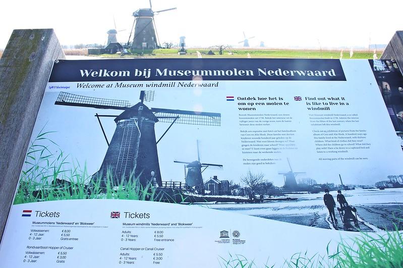 travel-Netherlands-Rotterdam-Kinderdijk-BLOG-17docintaipei (17)