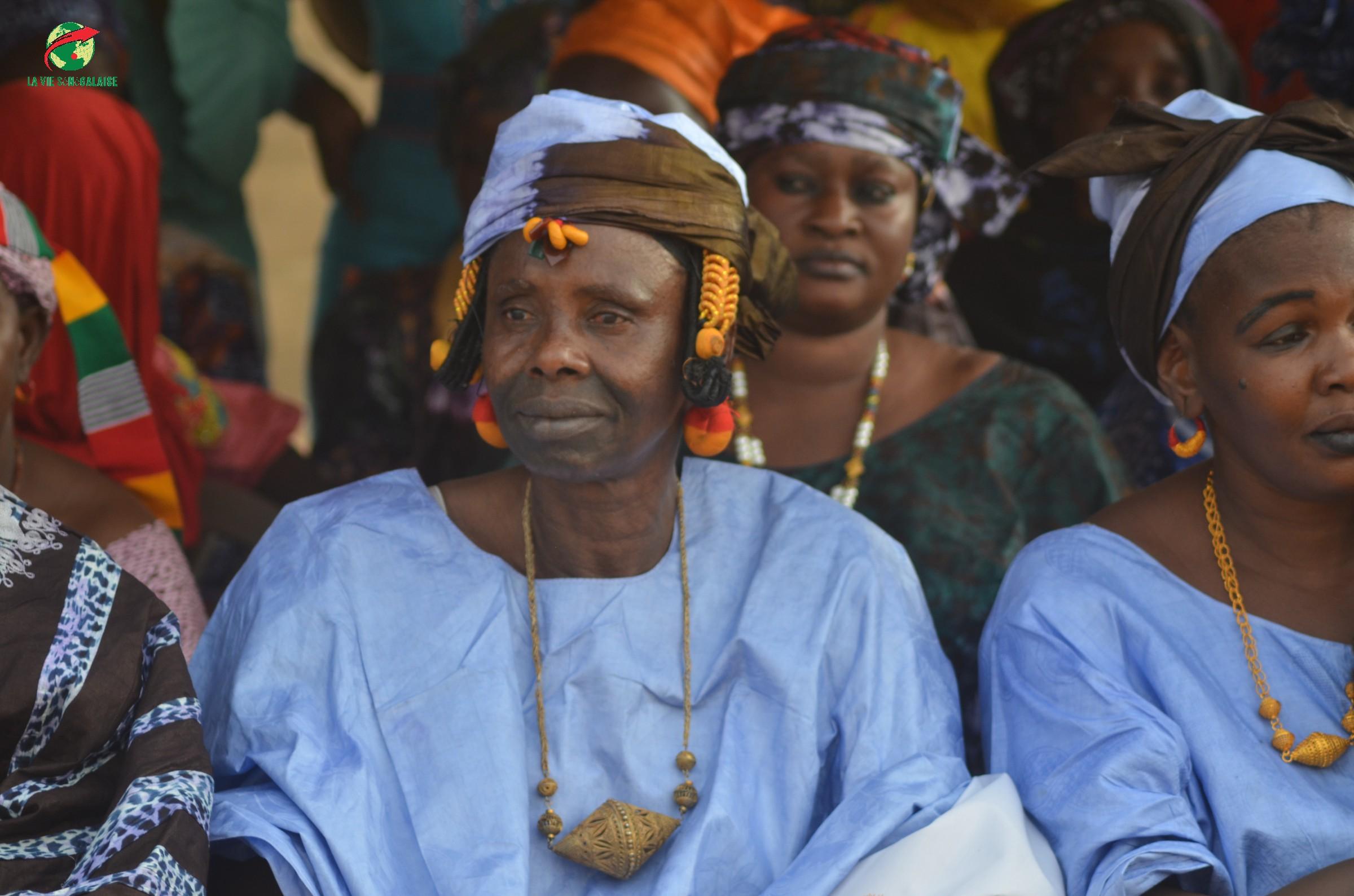 Journées Culturelles Waoundé, Parrain Bakary Biné Camara, Images de laviesenegalaise (29)