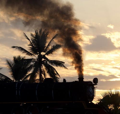 burma myanmar asia sunset railway railroad rail br train steam engine locomotive transportation yd 282 967 palm tree silhouette smoke gassteam trains railways farrail fareast january 2018