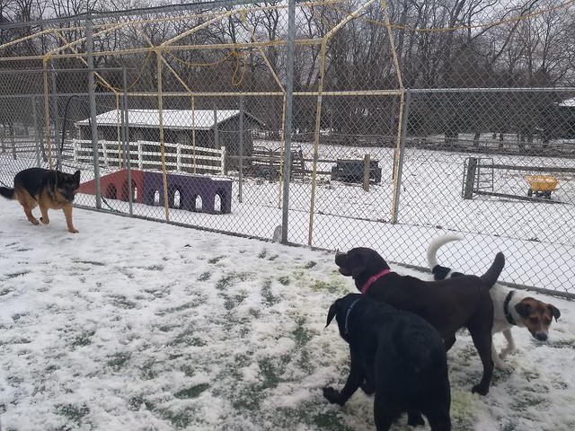 03-21-18 Snow Play on the Farm!!!