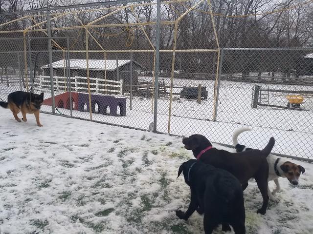 03-21-18 Snow Play on the Farm!!!