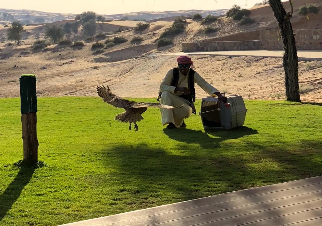 Ras Al Khaimah, UAE, 2018 117