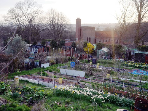 Allotment Spring