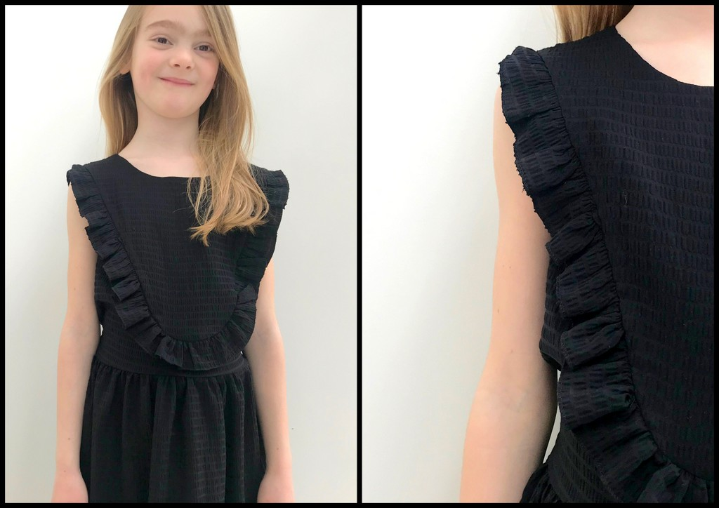 little black robin dress (collage)