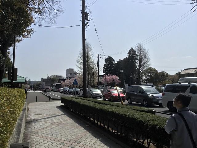 駐車場待ちの車の列 IMG_2685