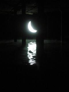 Проект «Частная луна»