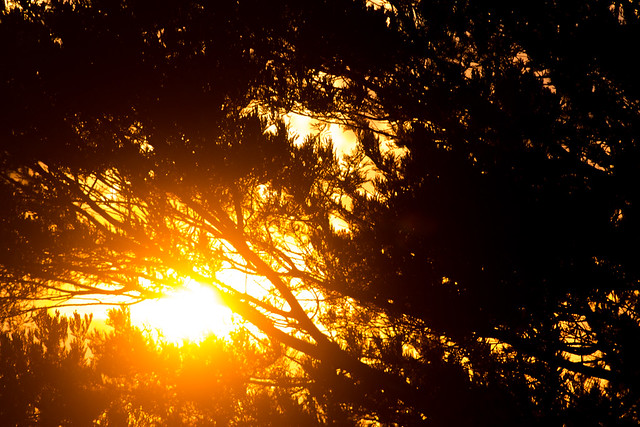 Burning Sunset, Canon EOS 600D, Tamron SP 70-300mm f/4.0-5.6 Di VC USD