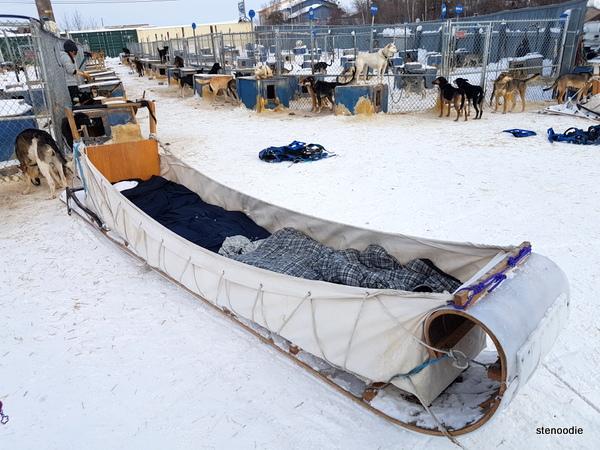 Beck's Kennels sleds