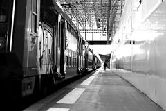 Along the fixed train