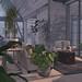oOo botanic coast living room