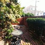 310 MC Backyard