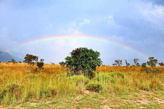 Südafrika, Canon EOS M5, Canon EF-M 22mm f/2 STM