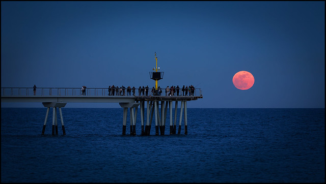 RED MOON .
