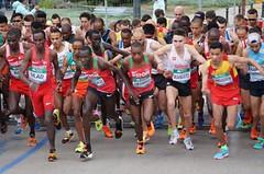 Párádní klání půlmaratonců ve Valencii, Homoláč kousek od osobáku
