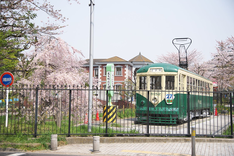 あらかわ遊園の桜