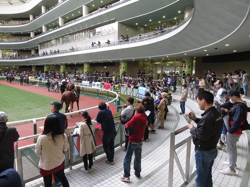 福島競馬場のパドック2階