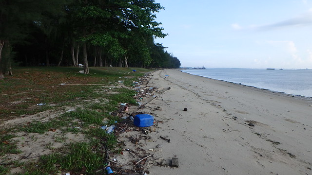 Trash on the high shore, Changi