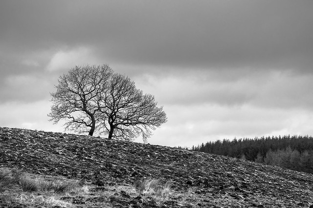 somewhere in Brecon Beacons