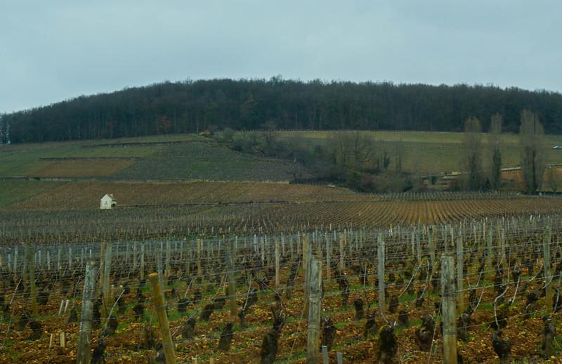 Bourgogne-17.jpg