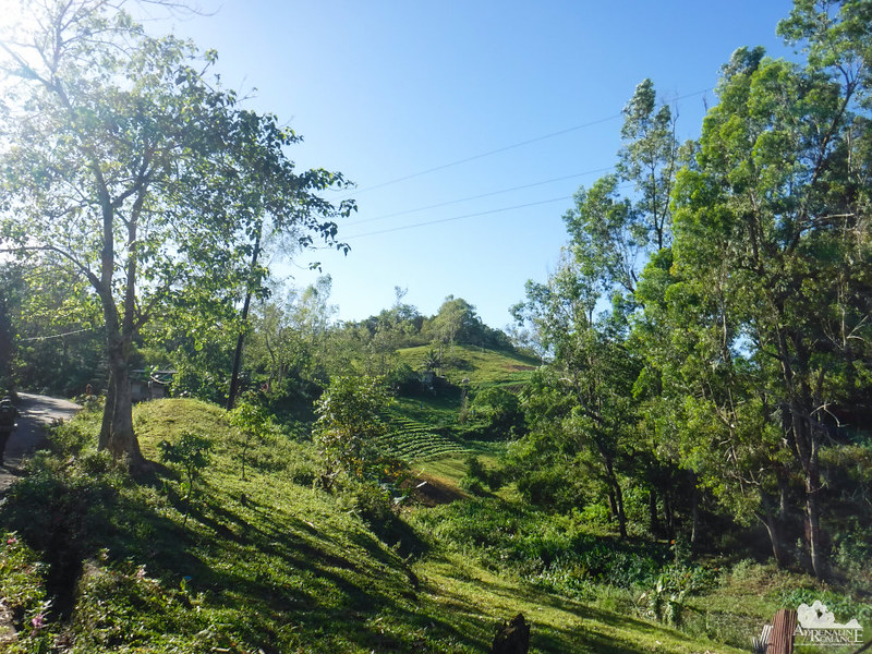 Farms of Maraag