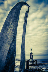 Whitby Whale Bones-09560