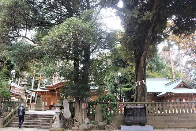 hisaizu-gosyuin059