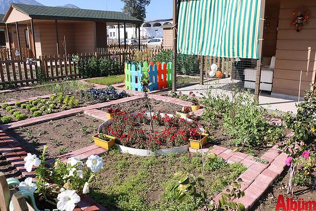 Antalya Büyükşehir Belediyesi emekliler hobi bahçesi- ilk hasatı aldılar -2