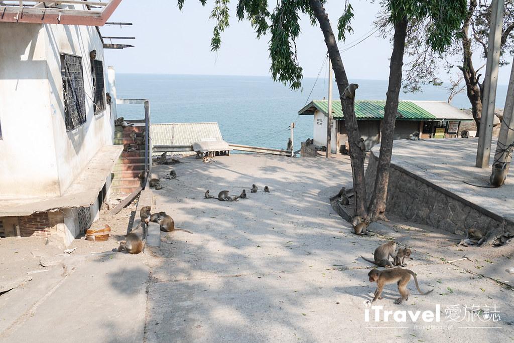 华欣景点推荐 考佬寺Wat Khao Takiap (36)