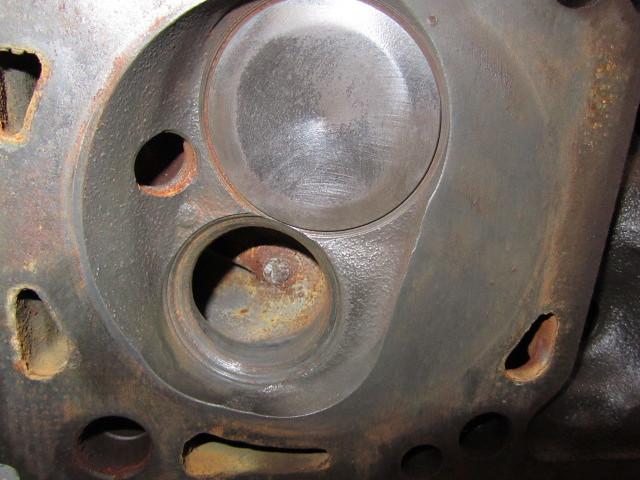 Dove C Head Damage  40103597495_52a959d3b2_z
