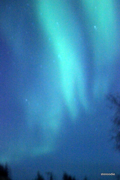 Aurora lights Yellowknife