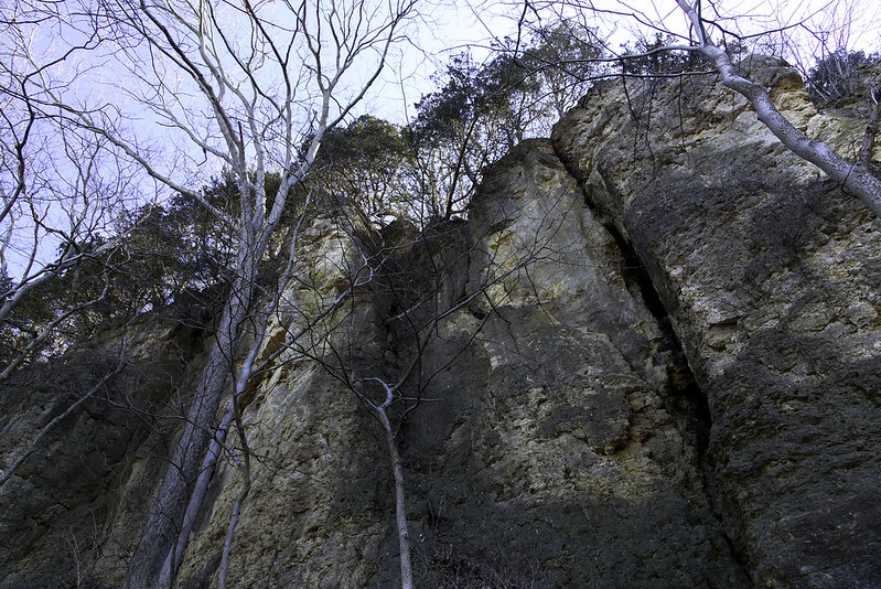 The Bluffs From Below