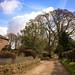 Hocker Lane at Bull Pen Cottage, Over Alderley, Cheshire East