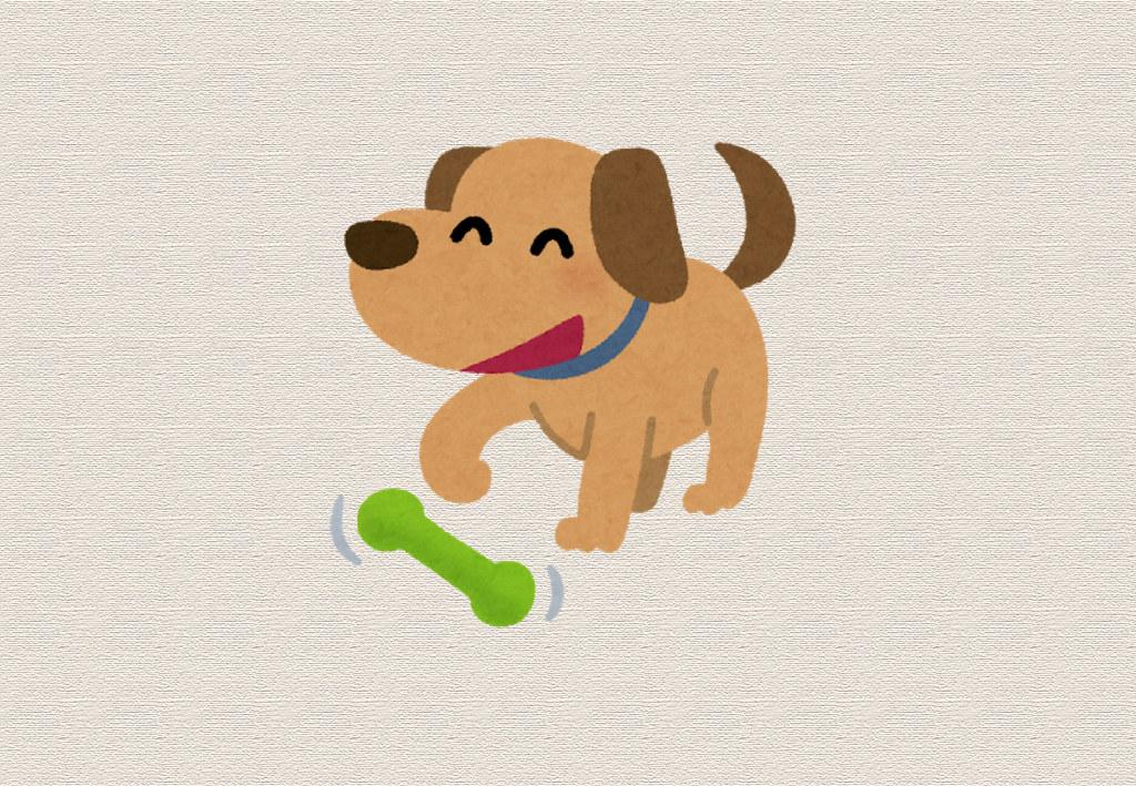 犬のアトピーには新型乳酸菌がおすすめ!
