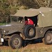 Vintage U.S. Army Dodge WC-51 ¾-ton 4×4 weapons carrier, Second World War, RFF 177