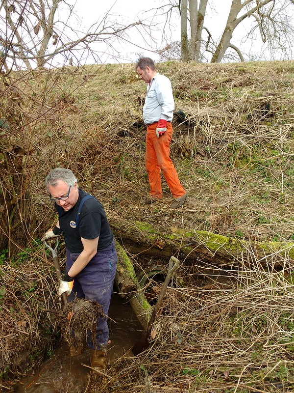 Clearing Culvert