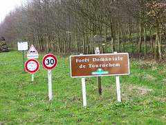 Tournehem-sur-la-Hem forêt domaniale - Photo of Licques