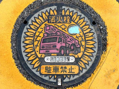 Ichikawa Hyogo, manhole cover 4 (兵庫県市川町のマンホール4)