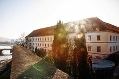 Das Linzer Schloss in der Morgensonne