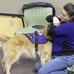 Meet 4 Paws for Ability