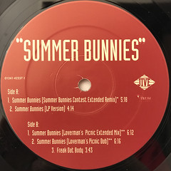 R.KELLY:SUMMER BUNNIES(LABEL SIDE-B)