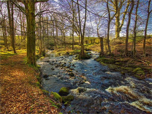 River Wharfe Yorkshire
