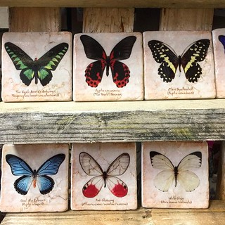 #marmor #butterflies #butterfly #henribanks #oldschooltiles #marble