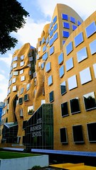 The Frank Genry designed Dr Chau Chak Wing Building at University of Technology Sydney