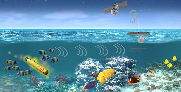illustration of marine animals detecting submarines