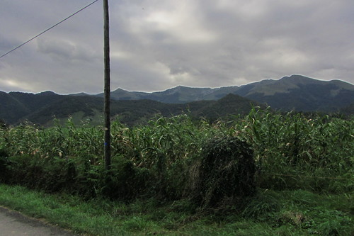 20120924 26 080 Jakobus Pyrenäen Wald Feld