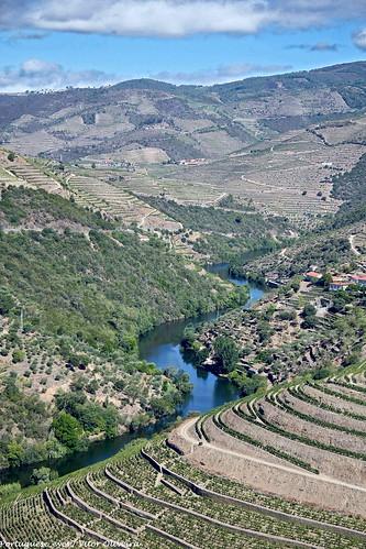 Vale do Rio Távora - Portugal 🇵🇹