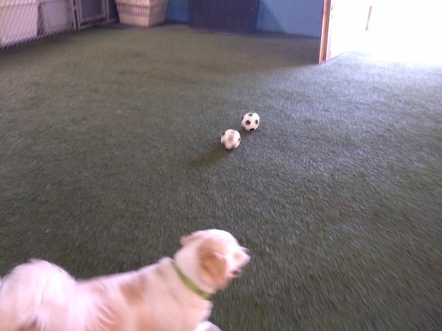 03/24/18 Soccer Play :D