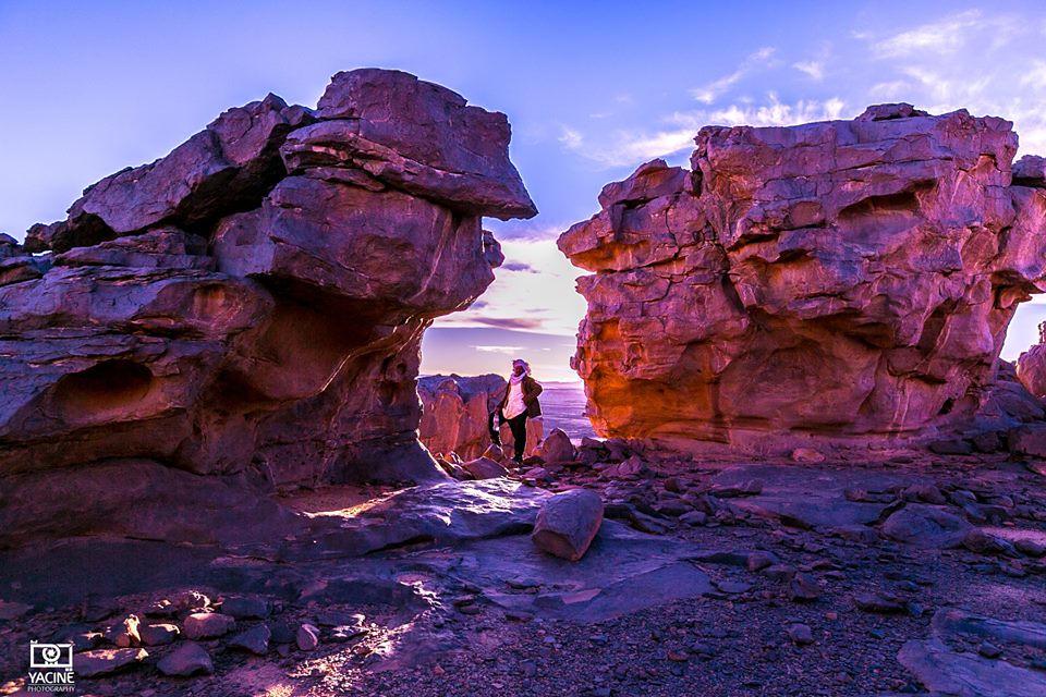 صور نادرة للطبيعة الجزائرية - صفحة 19 40587718914_dba29a0b6a_b