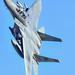 F-15D by Tim McMental