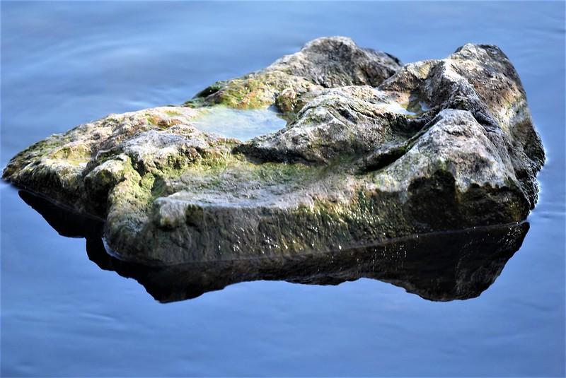River Aar 07.04 (13)